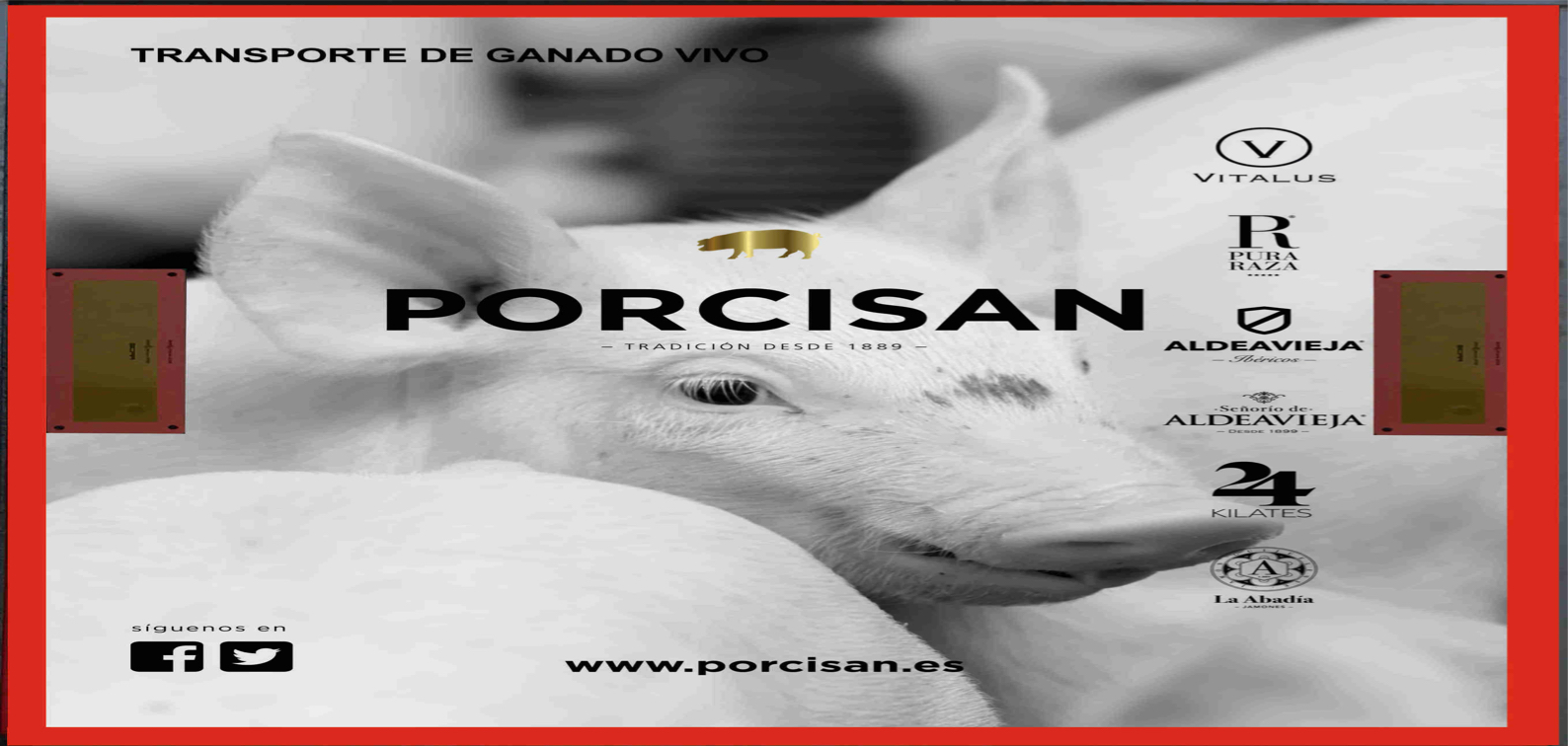 porcisan_trasera_03